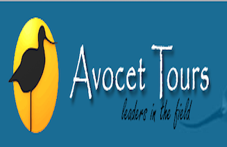 avocet-tours-logo